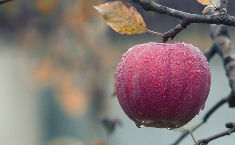Estes são os 8 alimentos que ajudam a limpar as artérias
