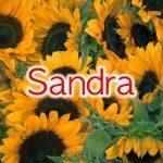 Coisa boa mesmo é ter uma Sandra na vida da gente 🥰