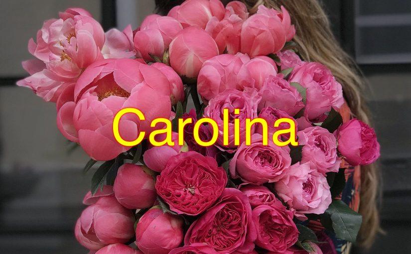 Quem tem uma Carolina tem tudo na vida, quem não tem que arranje