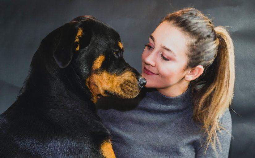 10 sinais que o cão dá quando ama muito seu dono, todos fazem isso