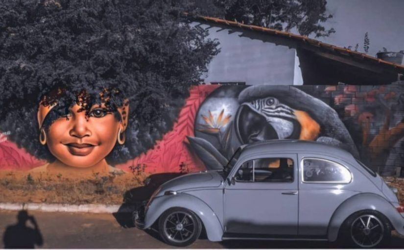 Artista brasileiro usa árvores em retratos de mulheres, obra incrível é admirada mundialmente